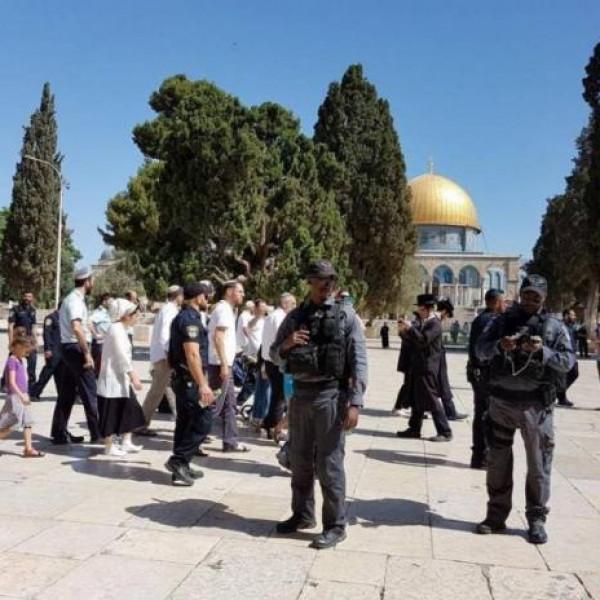 بحماية شرطة الاحتلال.. 140 مستوطناً وعنصر مخابرات يقتحمون الأقصى