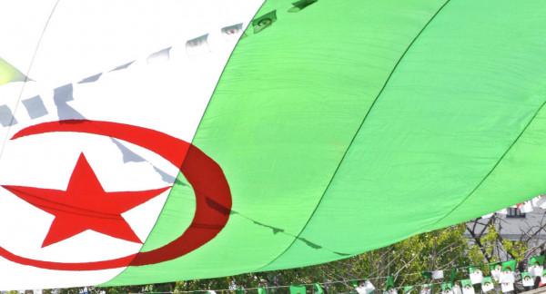 الحكومة الجزائرية: لن نُكرر أخطاء سوريا وليبيا