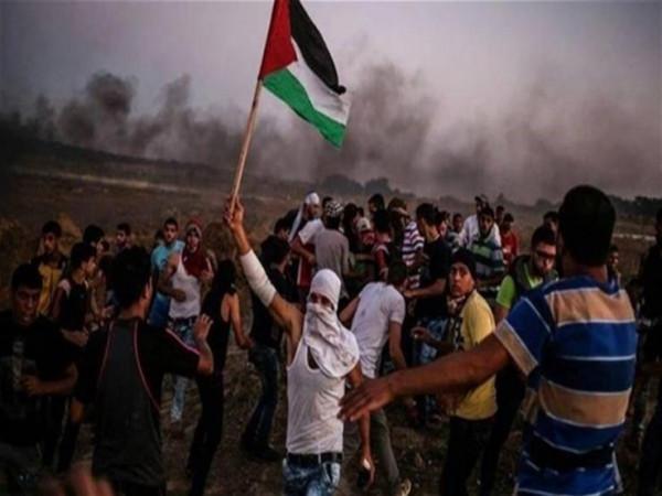 لأول مرة منذ عام.. 180 فلسطيني فقط شاركوا بفعاليات مسيرة العودة