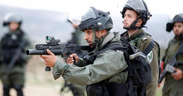شاهد: لحظة استشهاد شاب برصاص الاحتلال في بيت لحم