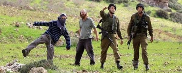 انتهاكات واسعة للمستوطنين في الضفة بحماية من جيش الاحتلال