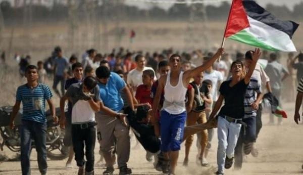 شهيدان وعشرات الإصابات برصاص الاحتلال الاسرائيلي شرقي قطاع غزة