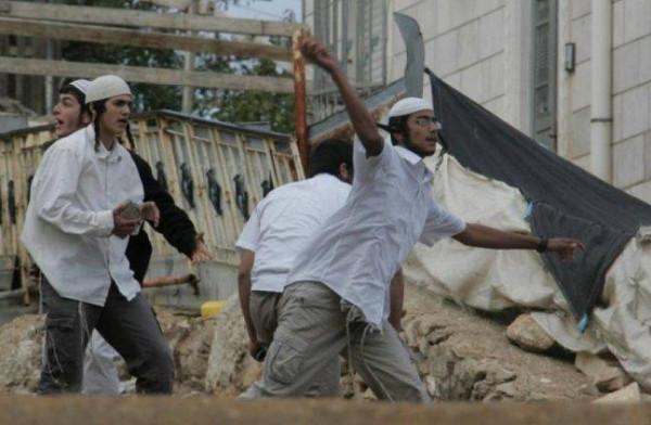 مستوطنون يهاجمون منازل ومركبات المواطنين شرق الخليل