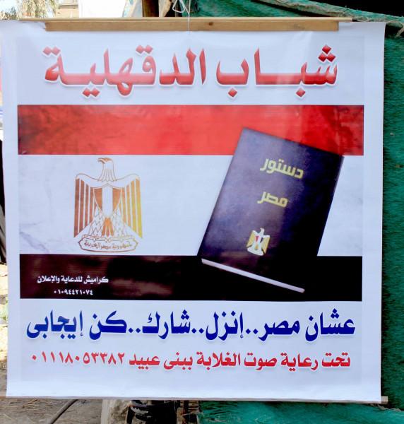 حملة حث المواطنين بالإستفتاء على التعديلات الدستورية في الدقهلية تكثف نشاطها