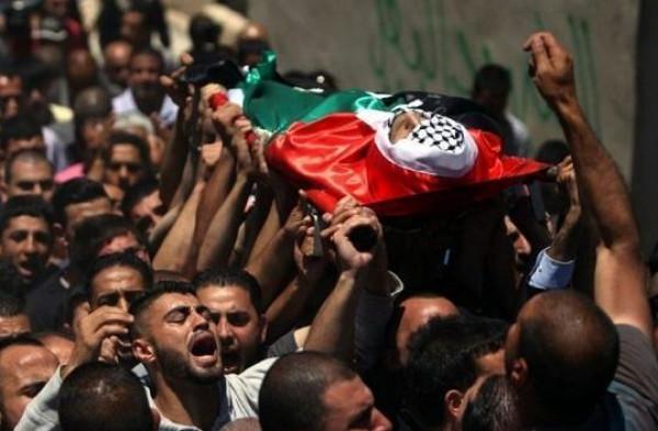 حصاد الأسبوع: شهيدان وعملية إطلاق نار وإصابة إسرائيليين و64 مواجهة