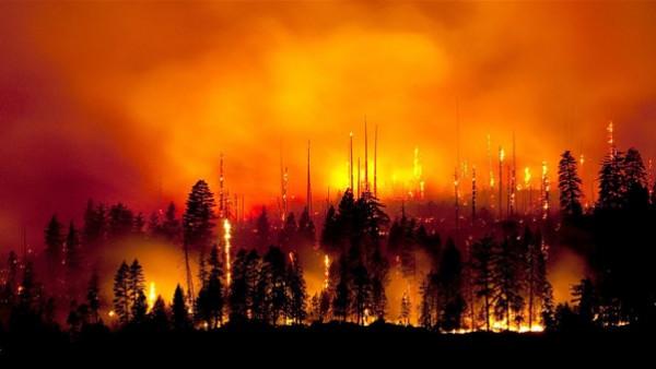حرائق الغابات تدمر 109 منازل شرق سيبيريا الروسية