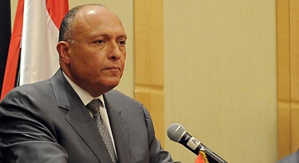سامح شكري: توافق عربي على ضرورة إقامة دولة فلسطينية مستقلة