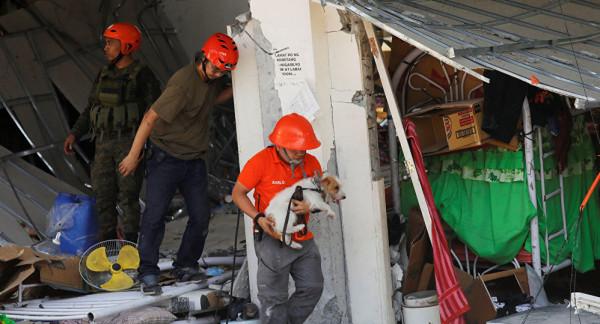 مصرع 11 و24 مفقوداً في زلزال ضرب الفلبين
