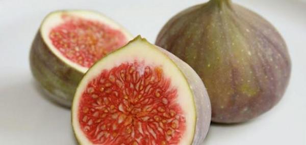 سبب صادم لا يعلمه الكثيرون.. لماذا يرفض النباتيون تناول ثمار التين؟