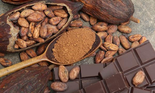 أدلة علمية تؤكد قدرة (الكاكاو) على تعزيز قوة الدماغ