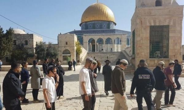 شاهد: مجموعة كبيرة من المستوطنين تقتحم المسجد الأقصى