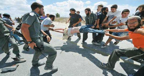 الهدمي: لقاءات مع قناصل وسفراء لإطلاعهم على هجمات المستوطنين