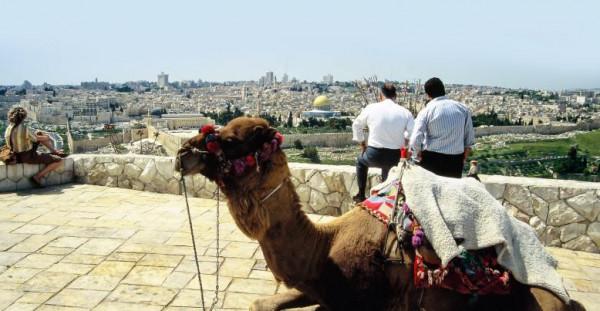 تَعرف على أعداد السائحين الذين زاروا فلسطين في عام 2019