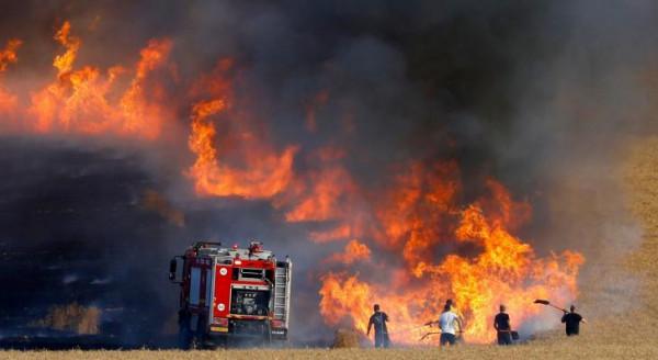 شاهد: حرائق جديدة في غلاف غزة