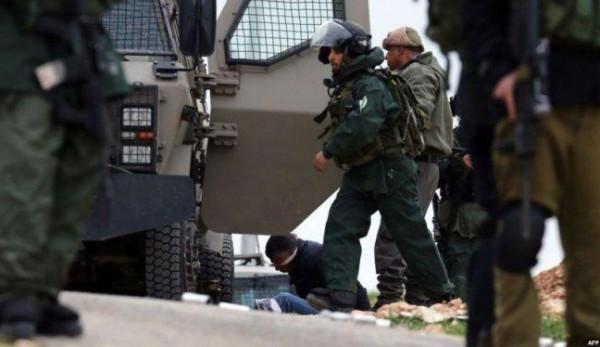 قوات الاحتلال تعتقل ثلاثة مواطنين