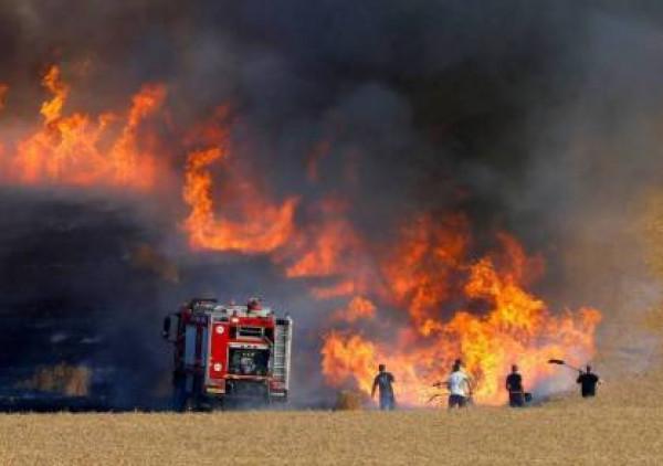 شاهد: الحرائق تشتعل في مناطق غلاف غزة بفعل البالونات الحارقة