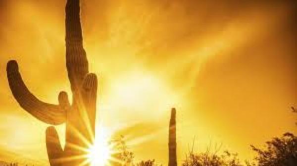 الطقس: تعمق الموجة الحارة والحرارة أعلى من معدلها السنوي بـ (13) درجة