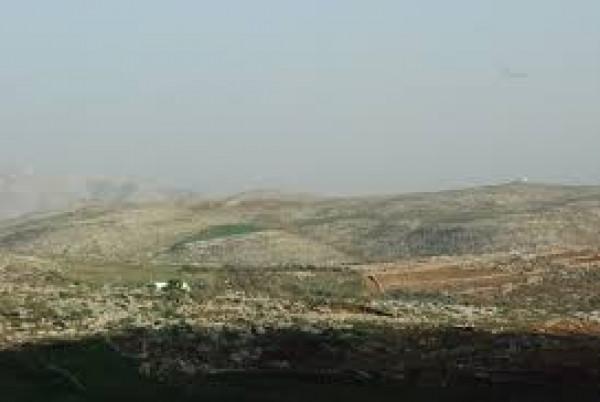 مستوطنون يُصيبون راعي أغنام برضوض والاحتلال يعتقل آخر في الأغوار