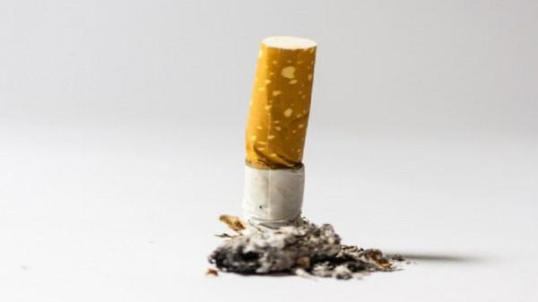 السجائر (الخفيفة) تزيد من فرص إدمان التدخين