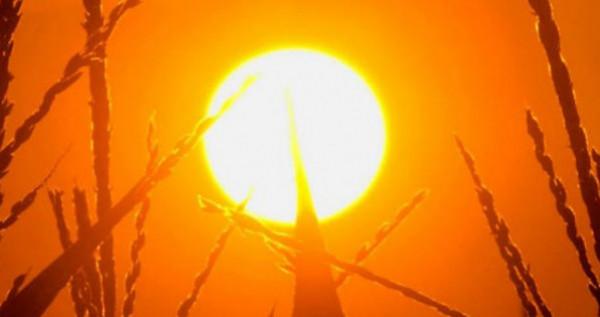 الأجواء حارة نسبياً والحرارة أعلى من معدلاتها بأربع درجات