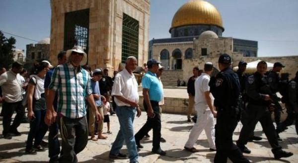 جماعة الهيكل تُعلن رسميًا نيتها اقتحام الأقصى يوم 28 رمضان