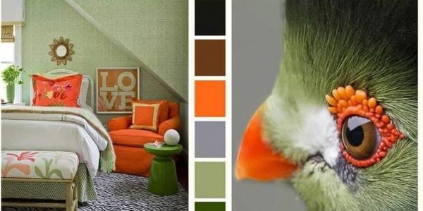 أستوحي ديكور منزلك من عصافير الكناري والحيوانات الأليفة