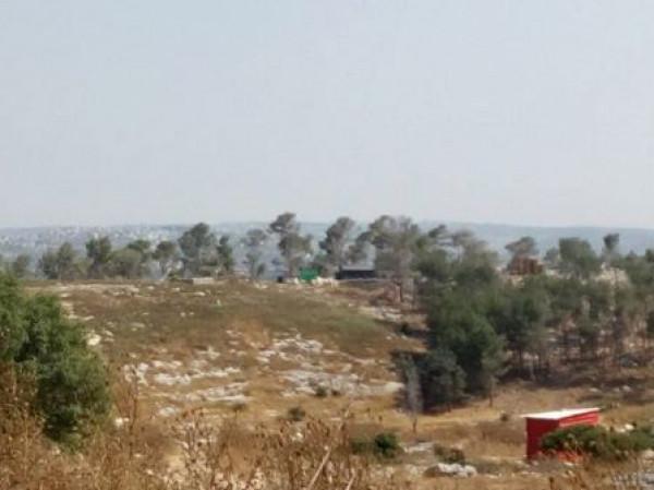 القدس: الاحتلال يوزع اخطارات هدم واخلاء أراضٍ في العيسوية لصالح حديقة تلمودية