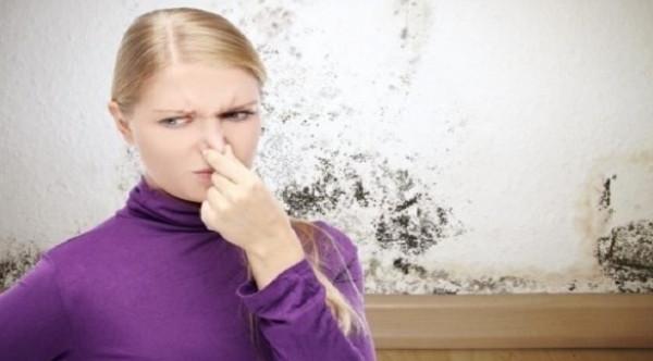 8 روائح خطيرة في المنزل لا يجب تجاهلها