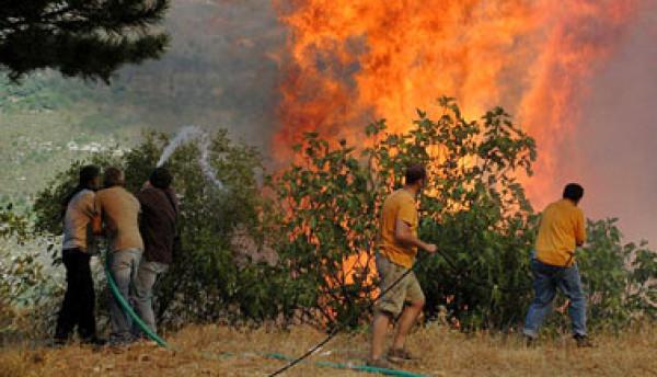 مستوطنون إسرائيليون يحرقون أراضٍ ببلدة عوريف جنوب نابلس