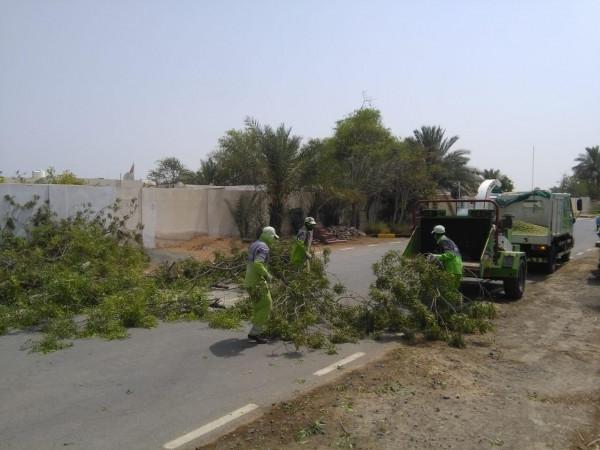 بلدية الحمرية تباشر خطتها لإزالة الاضرار جراء الامطار