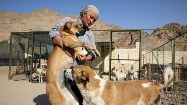 انتشار ظاهرة أكل لحوم الكلاب بالأردن يُثير جدلاً