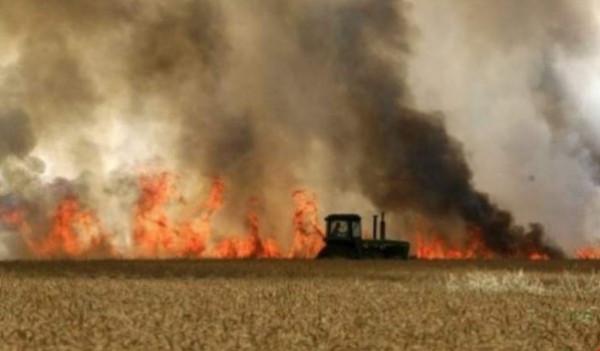 منذ الصباح.. 19 حريقاً اندلع بمستوطنات غلاف غزة