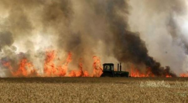 الإعلام الإسرائيلي: 20 حريقا بالأمس.. بالونات غزة الحارقة تشعل الغلاف من جديد