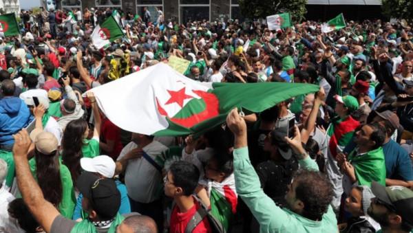 ضبط خلية خططت لتنفيذ هجمات ضد متظاهرين بالجزائر