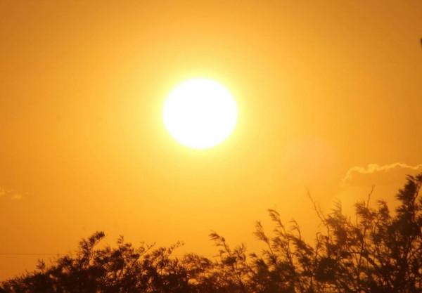 إرشادات من وزارة الصحة للتعامل مع الأجواء الحارة غداً   دنيا الوطن