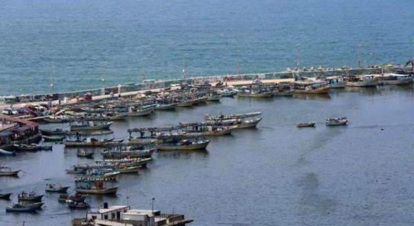 عياش: الاحتلال يُسلّم اليوم 10 حسكات تابعة للصيادين الفلسطينيين عبر البحر
