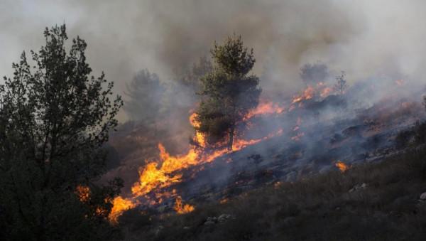 بسبب موجة الحر.. 100 حريق خلال 10 ساعات بالضفة الغربية