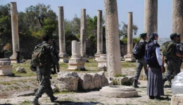 عشرات المستوطنين يقتحمون الموقع الأثري في بلدة سبسطية