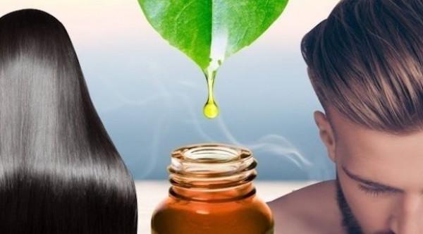 كيف يمكن للزيوت العطرية تحسين صحة فروة الرأس والشعر؟