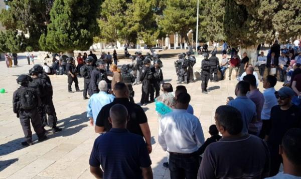 طمليه: لقد بلغ السيل الزبى بتصرفات دولة الاحتلال الإسرائيلي ضد المسجد الأقصى