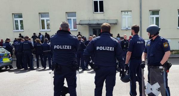 """""""دبابير غاضبة"""" تقدم خدمة خاصة للشرطة الألمانية"""