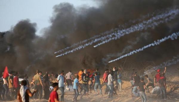 حصاد الأسبوع: 7 شهداء وإصابة 8 إسرائيليين و4 عمليات و56 مواجهة