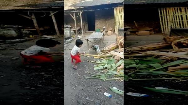 شاهد: دجاجة تهاجم طفلة بشراسة