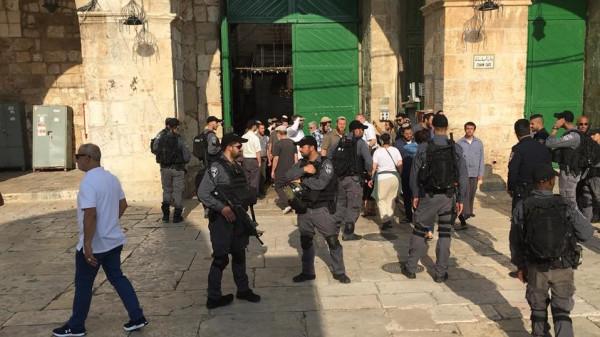 الخارجية: الفشل في كسر صمود المقدسيين أصاب الاحتلال بالهستيريا