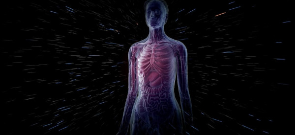 علمياً.. ماذا يحدث لجسم الإنسان بعد 100 عام من الوفاة؟