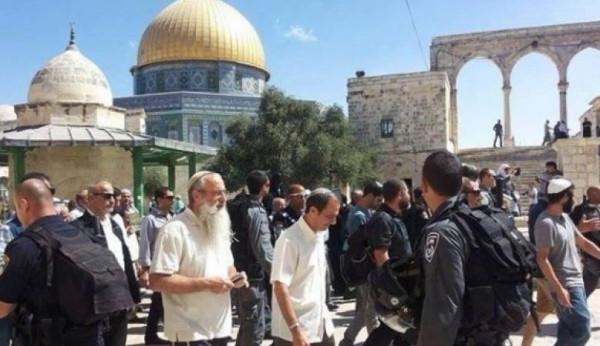 102 مستوطناً يقتحمون المسجد الأقصى