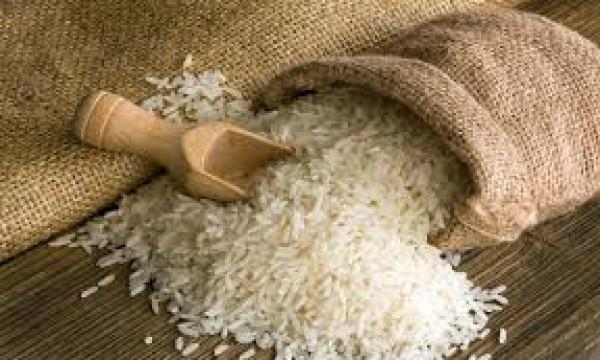 وزير مصري: مصر لن تستورد الأرز في السنة المالية الحالية