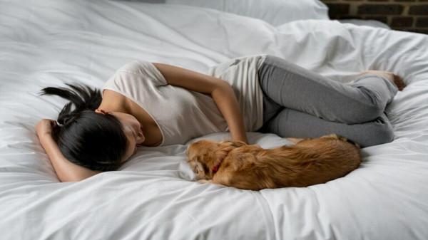 نتيجة بحث الصور عن النوم بجانب الكلاب يحمل فوائد صحية مثيرة!
