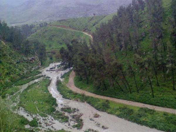 القناة 12: الحكومة الإسرائيلية ستُصادق على إنشاء مستوطنة بغور الأردن