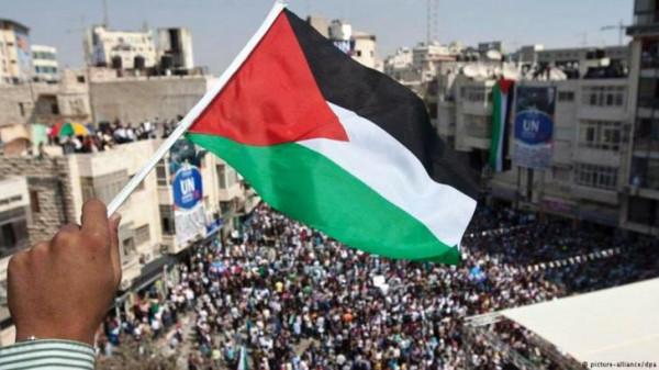 الخارجية: جهود دبلوماسية مُكثفة لمواجهة محاولات تهميش القضية الفلسطينية